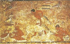 Feeding antelope. Painting from the tomb of nomarch Khnumhotep II in Beni Hasan. XII dynasty.
